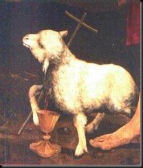 agneau (1)