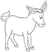 burro1