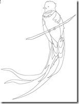 quetzal 4