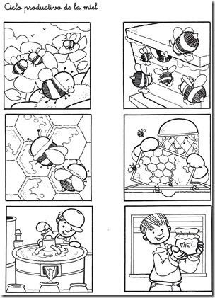 Ciclo productivo de la miel 03-1