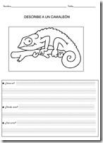 animales primaria - blogcolorear-com (5)