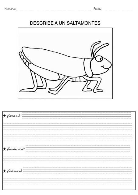 [animales primaria - blogcolorear-com (22)[2].jpg]