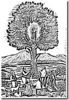 virgen del pino canarias 1