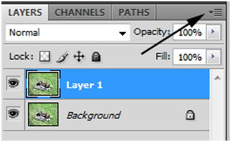 Layer Palette Settings