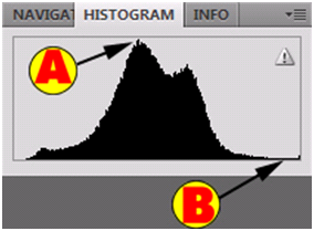 Bad Histogram Chart