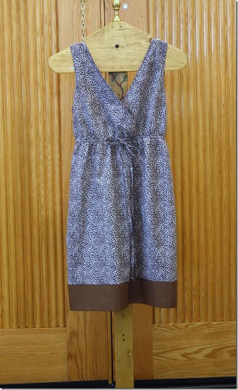 Jo's Zebra Dress 012
