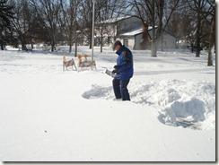 blizzard 02-01-11 010