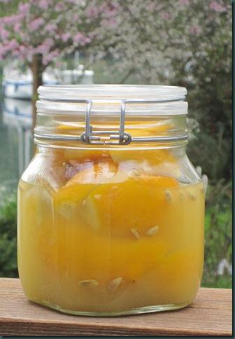 preserved lemons 021