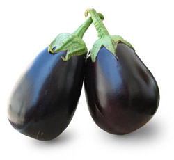 BT Brinjal Image PPT Controversy India & UK