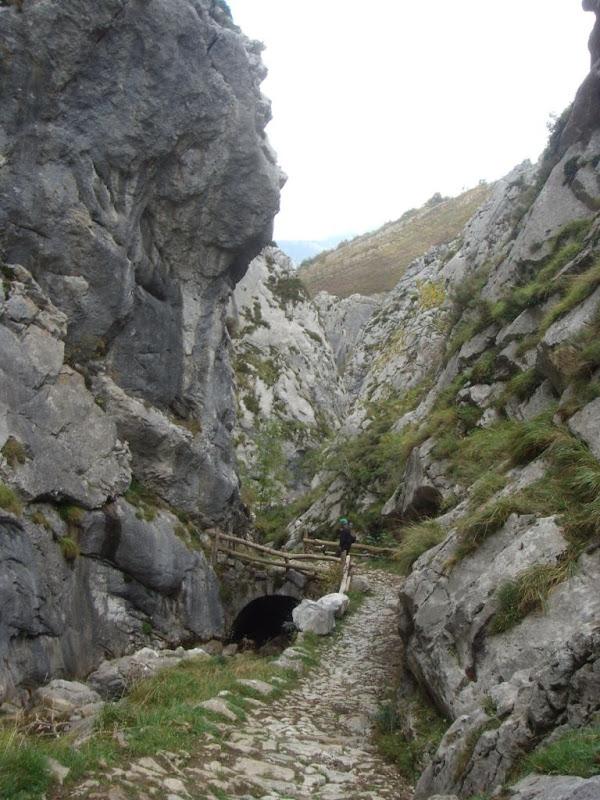 Puente sobre el río Pino