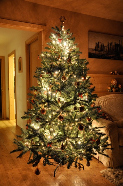 addobbato per Natale la casa, sia dentro che fuori. Ecco il mio albero ...