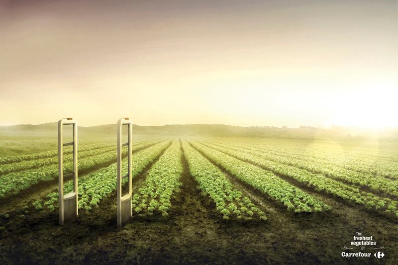 Carrefour vegetables