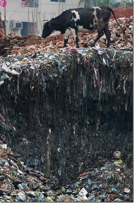 more freak show blog poluição e as pessoas (8)