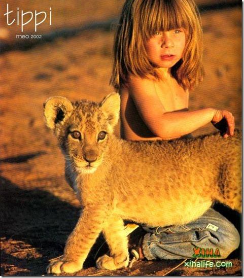 Book livro Tippi pequena garota e sua amizade com Animais selvagens  (5)