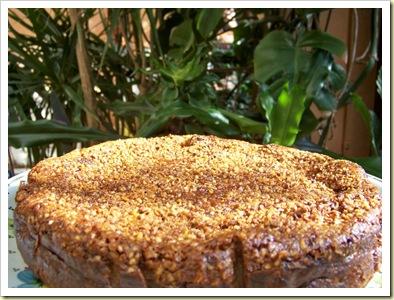 cheese cake praliné
