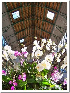 orchidées palais rameau