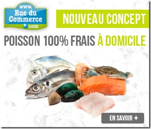 n54g_poisson rue du commerce