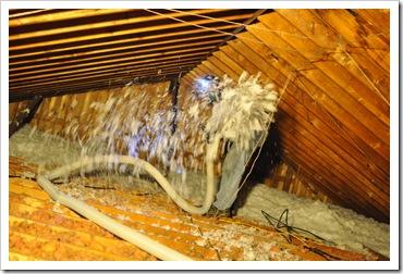 insulation day 016