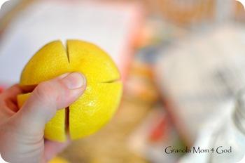 preserving lemons 003