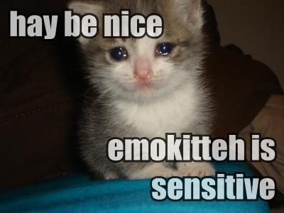 hay be nice emokitteh sensitive