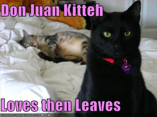 Don Juan Kitteh Loves then Leaves