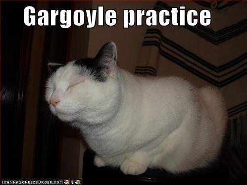 Gargoyle practice