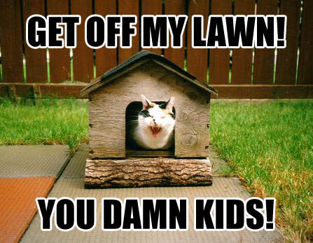 GET OFF MY LAWN! YOU DAMN KIDS!