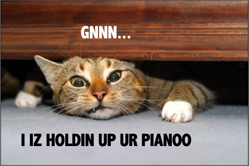 GNNN I IZ HOLDIN UP UR PIANOO