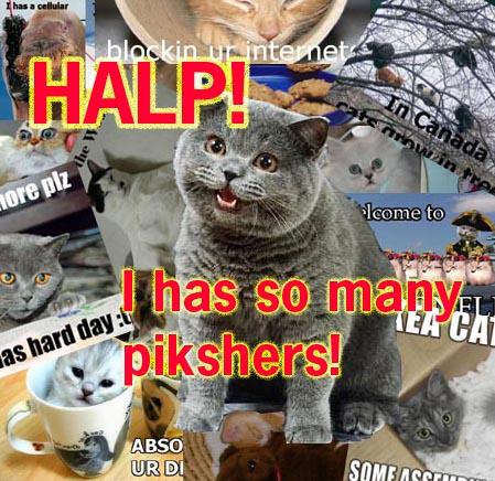 HALP I has so many pikshers!
