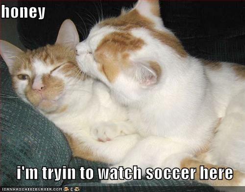 honey i'm tryin to watch soccer here