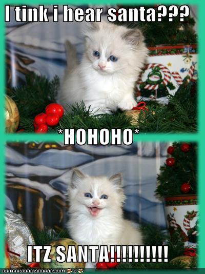 I tink i hear santa HOHOHO ITZ SANTA