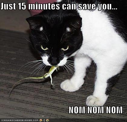 just 15 minutes can save you... NOM NOM NOM