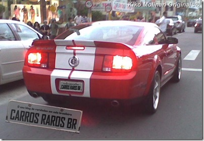Ford Mustang Shelby GT500 (2-2)[2]