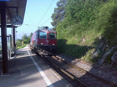 Neuchatel Train