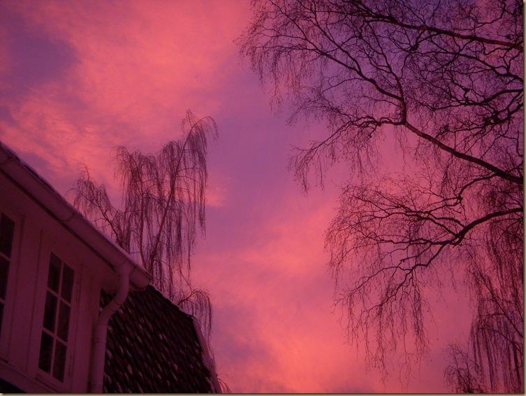 Vinter 0809 144