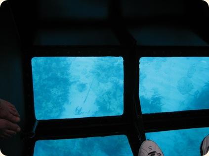 John Pennekamp Glass Bottom Boat 021