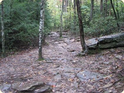 Fall Creek Falls SP 075