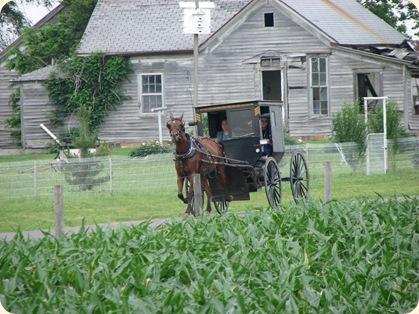 Ilinois Amish 022