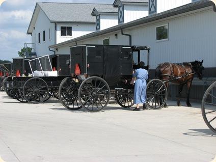 Elkhart Amish Area - 2010 022