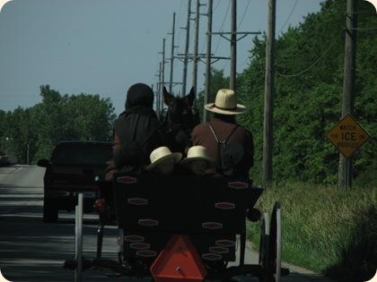 Berne, IN Amish 013