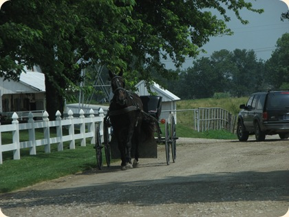Montgomery  IN -  Amish 007