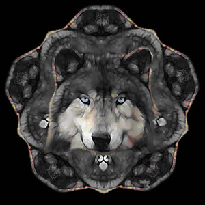 Power Animals Totem Animals And Spirit Animals Cover