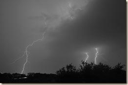 lightning longhorndave