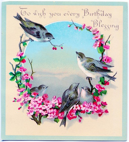 1birthdaybirds-graphicsfairy012