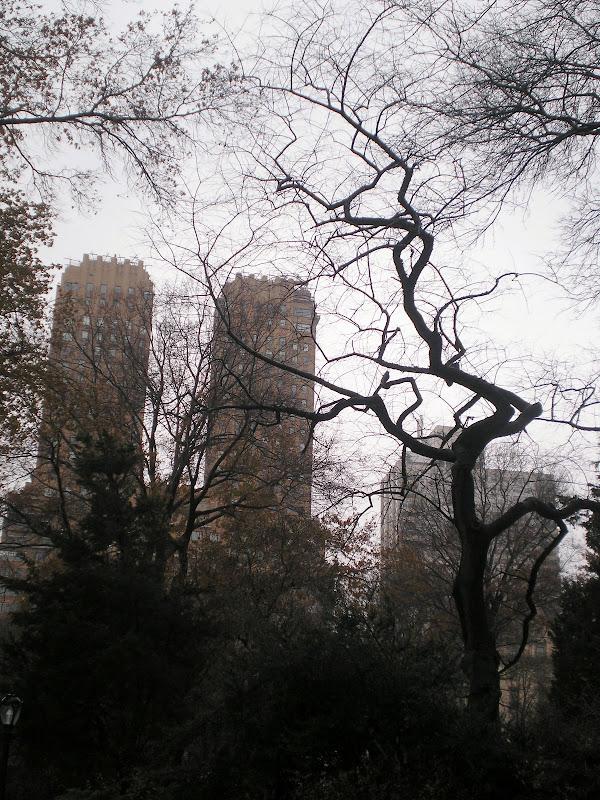 Inverno em Nova Iorque