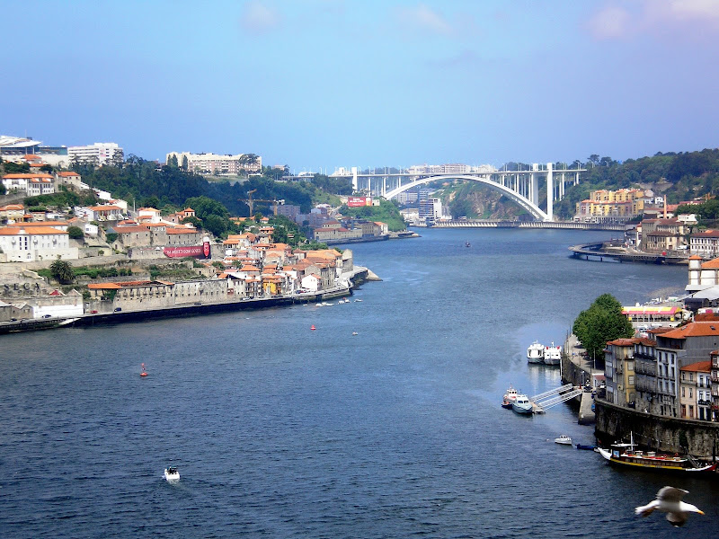 Porto e a Ponte da Arrábida ao fundo