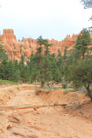 BryceCanyonNP_20100818_0316.JPG Photo