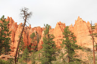 BryceCanyonNP_20100818_0324.JPG Photo