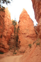 BryceCanyonNP_20100818_0329.JPG Photo