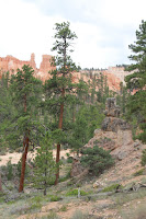 BryceCanyonNP_20100818_0099.JPG Photo